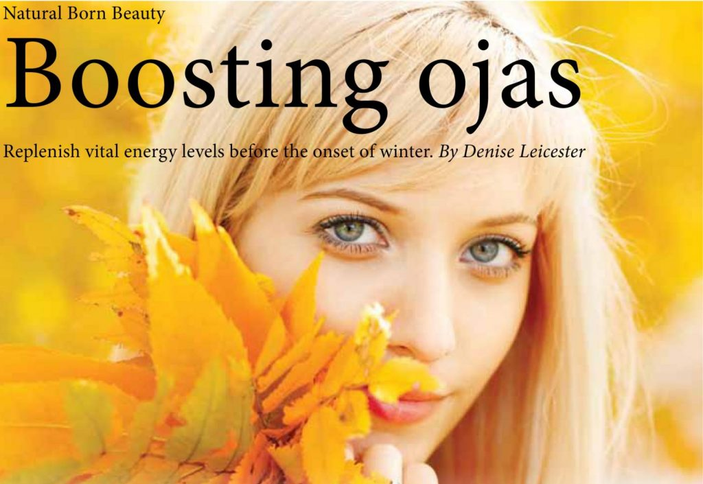 OM Yoga and Lifestyle Magazine Articles - November