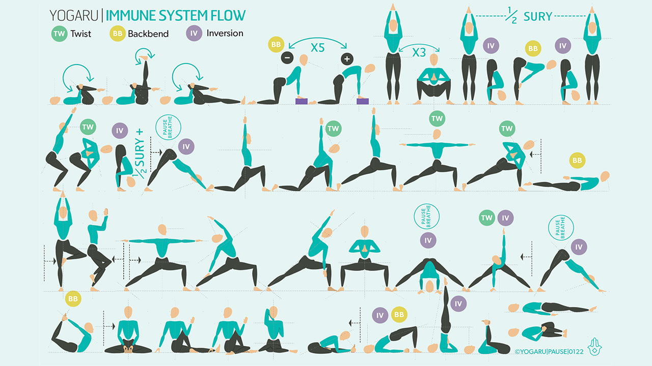 Yoga and the Immune System