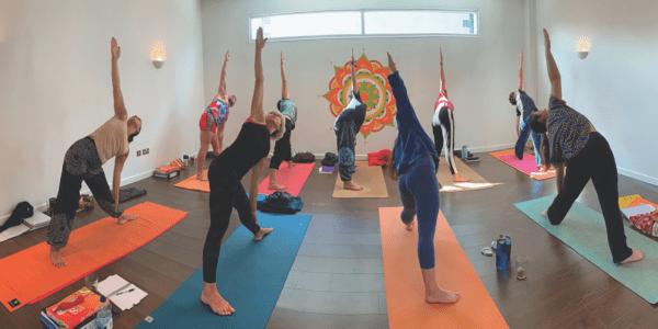 Are you ready for yoga teacher training?