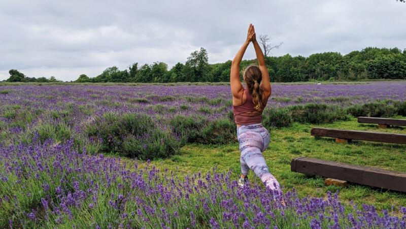 Love lavender - Amanda Wass